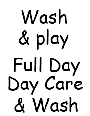 Wash & Play full day