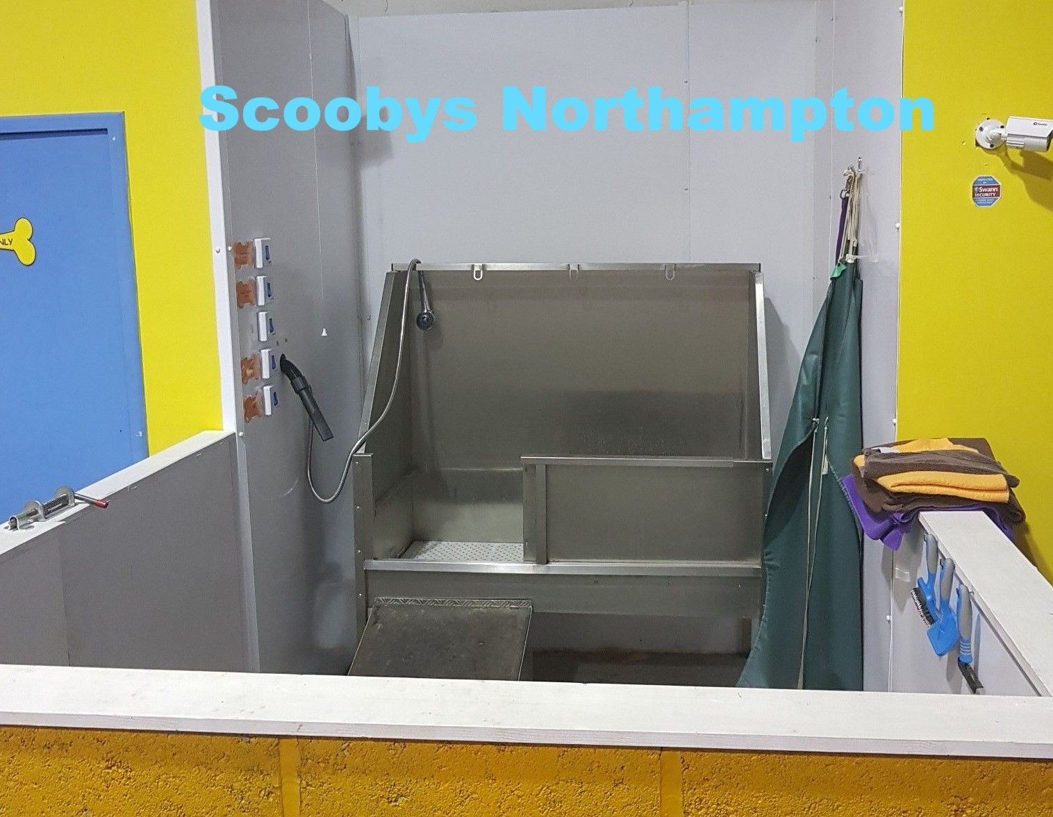 one of the dog wash baths at scoobys doggy day care northampton